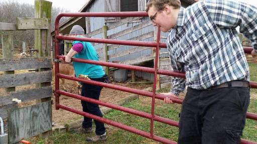 Volunteers adjusting another gate